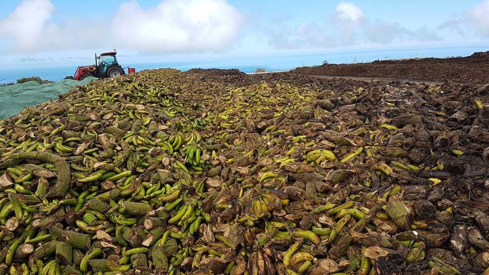 La Prosperidad (La Palma) #Agrocomposta